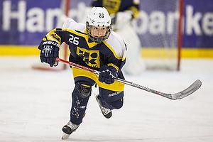 U-13.2 ishockeyspillerne spillede l�rdag puljeturnering i Herning i weekenden.
