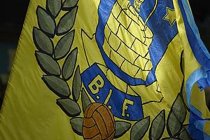 Stort br�ndbyflag