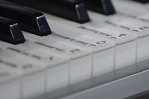 Keyboard med spiller sange p� tangenterne