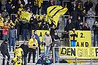 Hortsens-fans