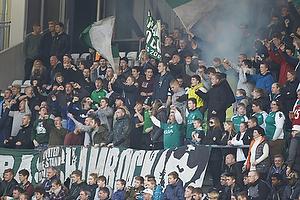 Viborg-fans