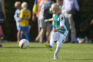TB - Viborg FF