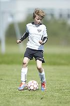 Vejle BK - VSF Fodbold