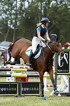 D4 HorseShow i Vig