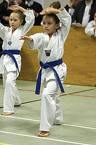 Teakwondo - Esbjerg Plus Cup Teknik