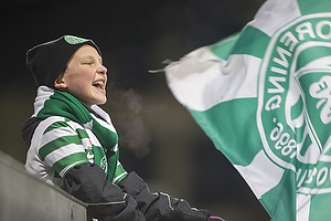 Viborg-fan