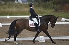 Slangerup-Lynge Rideklub - Unghestechampionat